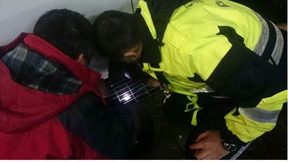 假牙掉水溝 警察用「神器」撈起 |