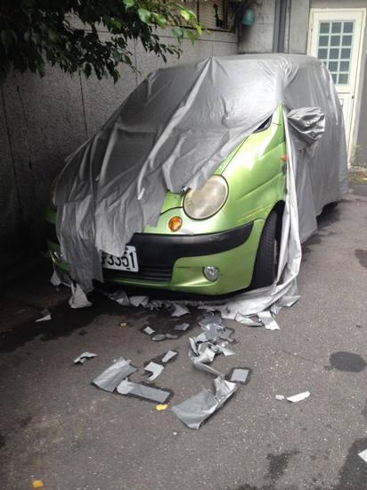 車蓬蓋遭撕碎怪罪貓! 網友:怎不說恐龍… |