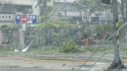 蘇迪勒強風吹 北市上百路樹倒多淹水  