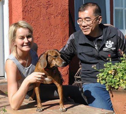 另類外交! 台灣受虐狗狗變身英國皇家犬 | 台灣動物緊急救援小組志工.洛杉磯探視「福爾摩沙」