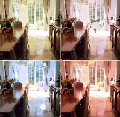 王菲9歲愛女上傳影片 天后私生活看光光   王菲的豪宅意外曝光。翻攝自李嫣儿super嫣儿的美拍