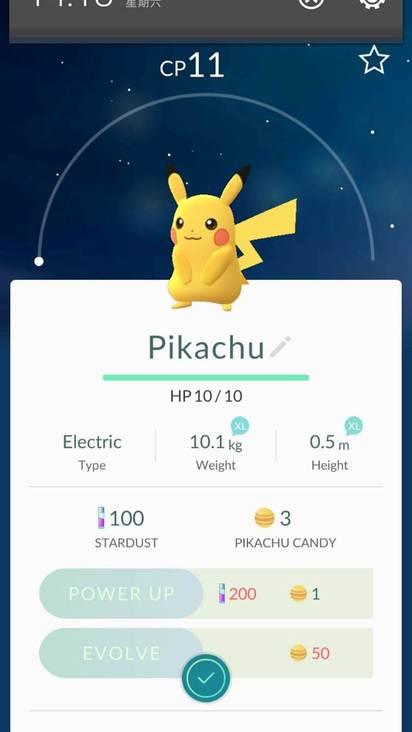 10大寶可夢熱搜 牠打趴皮卡丘、快龍 | 第二名則是皮卡丘。(翻攝網站pokemon.com)
