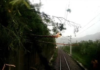 路樹倒壓電車線 台鐵鹿野=山里中斷近2hr已修復   台鐵人員搶修。
