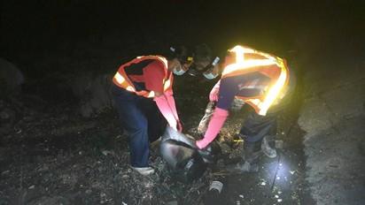彰化漢寶濕地驚見大量雞屍! 縣府連夜清理 |