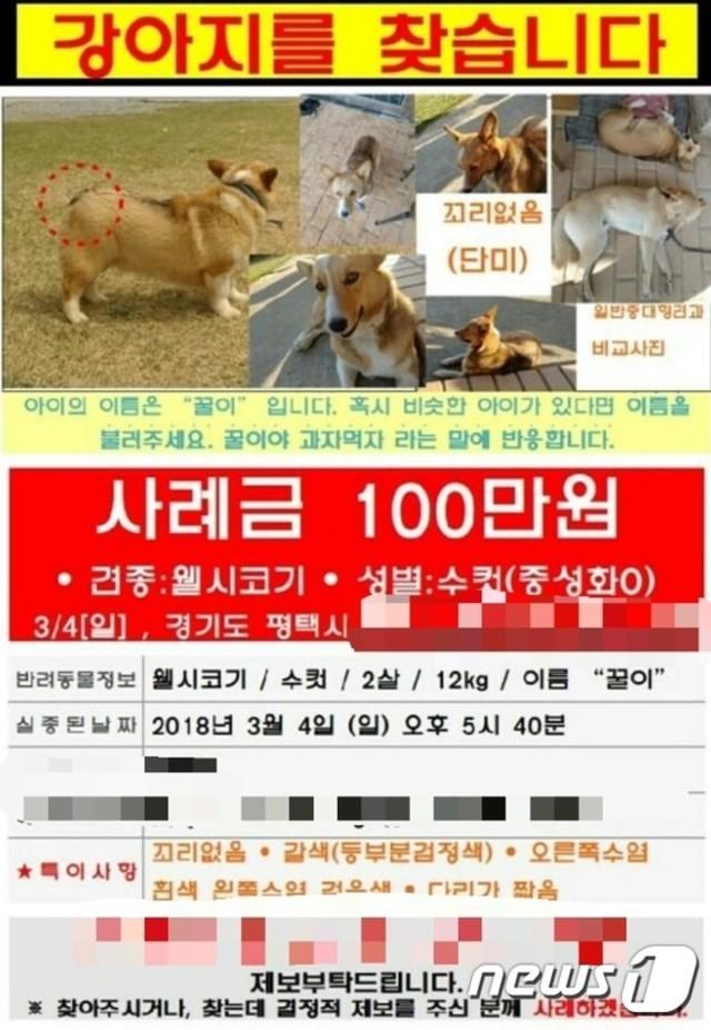 可惡! 韓女愛犬無端消失 竟被鄰居煮來吃  