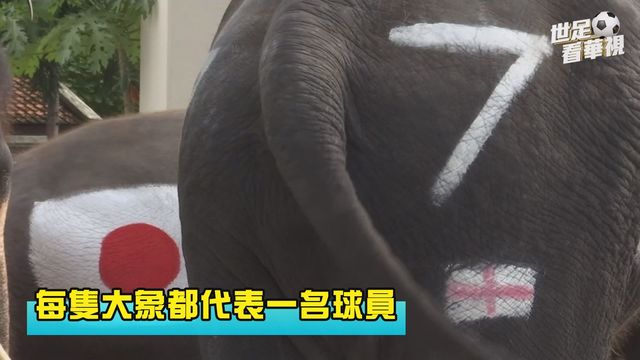 (畫面來源/SNTV)