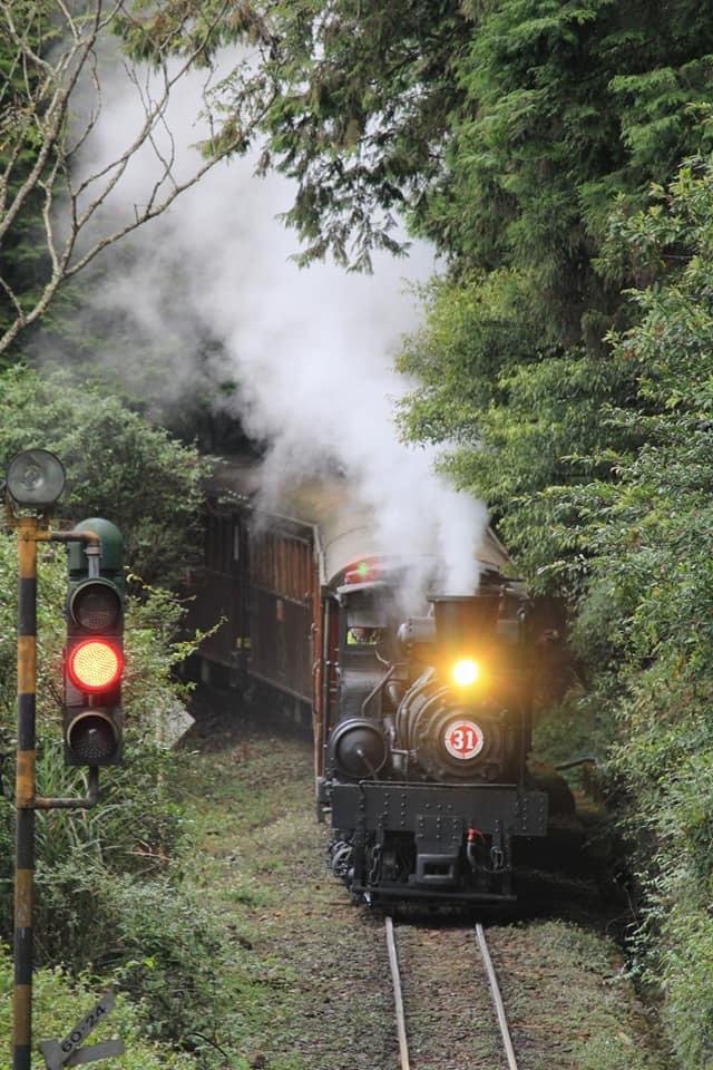 3天就搶光!阿里山首推「紅色聖誕列車」超吸睛 | 阿里山林鐵。(取自林鐵文資處粉專)