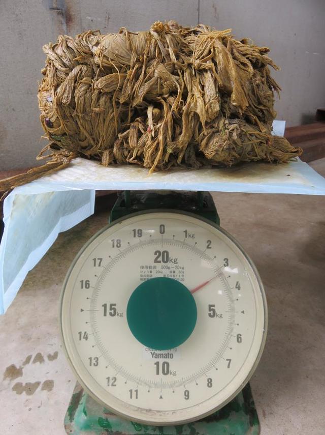 日本奈良之鹿愛護會解剖鹿,發現重達3.2公斤的異物。(翻攝日本奈良之鹿愛護會臉書)