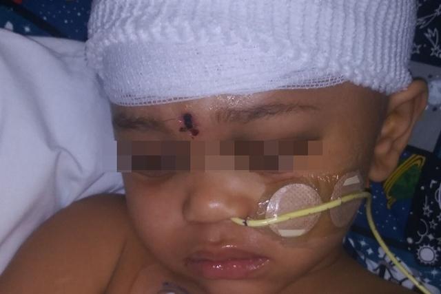 4歲男童偷玩槍 誤擊發自轟爆頭 |