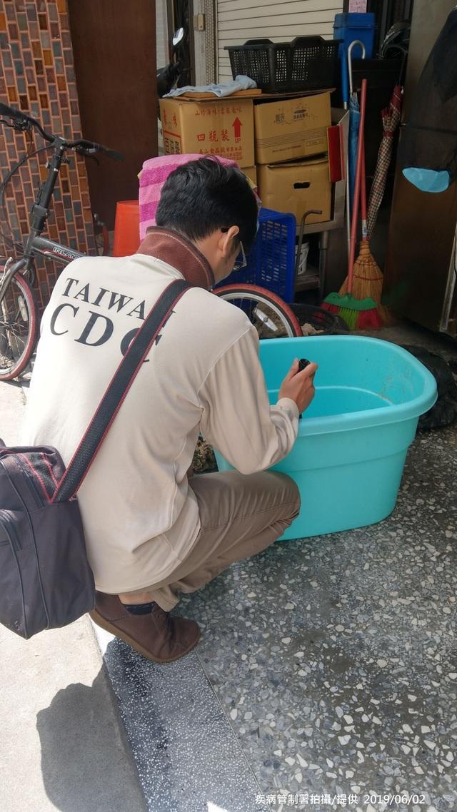 本土登革熱感染已8例 均在高雄市 | (疾管署提供)