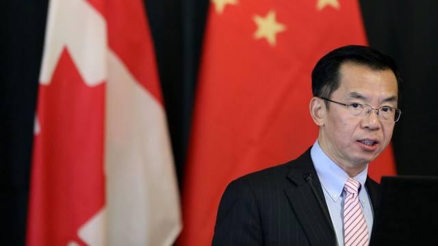 中國駐加拿大大使盧沙野(翻攝環球時報)