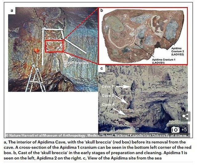 Apidima 1 和 Apidima 2 在希臘南部阿皮迪瑪洞穴(Apidima Cave)角礫岩堆內出土的位置 (翻攝自/dailymail 官網)