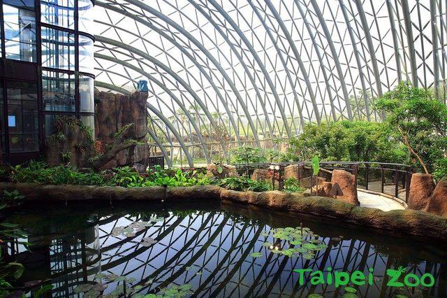 亮相! 北市動物園新地標 黃金級綠建築「穿山甲館」 |