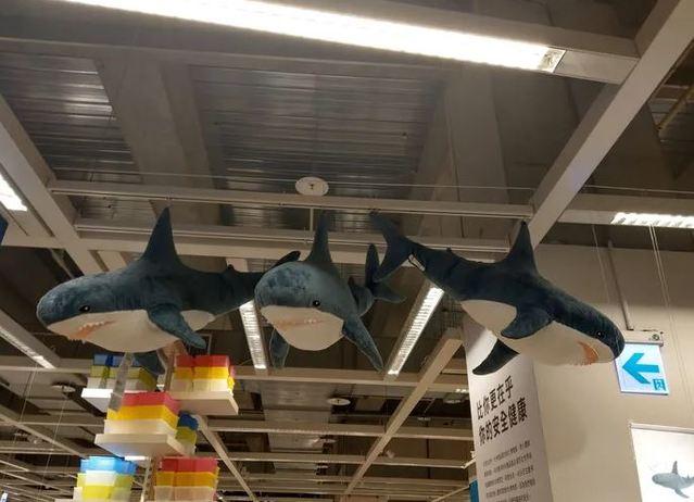 IKEA這隻鯊魚造型玩偶,相當受到歡迎。(翻攝DCARD)