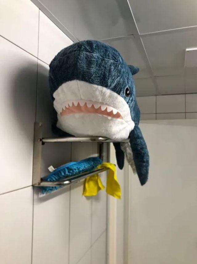 小鯊魚洗完澡,正在乾澡。(翻攝DCARD)
