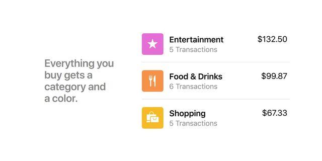 """堪稱""""地表最強信用卡"""" Apple Card嬌貴難照顧?!   Apple Card能細分消費項目及花費地點。(翻攝/蘋果官網)"""