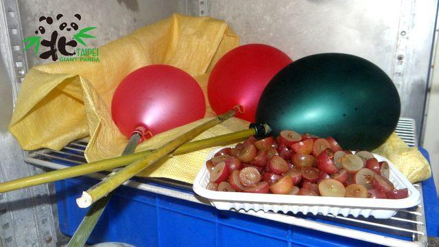 保育員將氣球結冰作為蛋糕的主要裝飾,主題是「球仔有成」,取了諧音希望她能夠「求」仔有成,再幫「圓仔」成功添弟妹。((台北市立動物園提供)