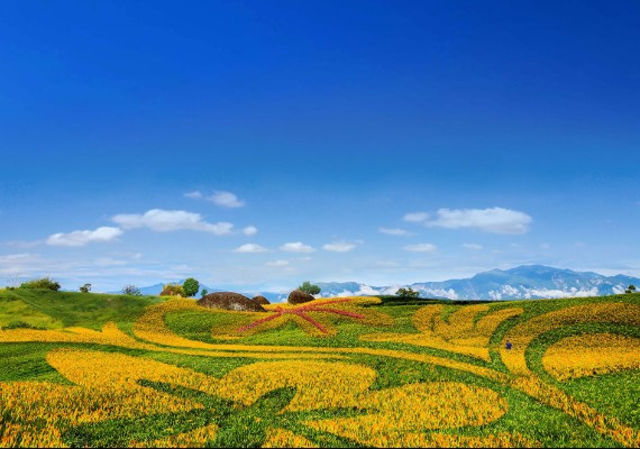 image source:農業易遊網