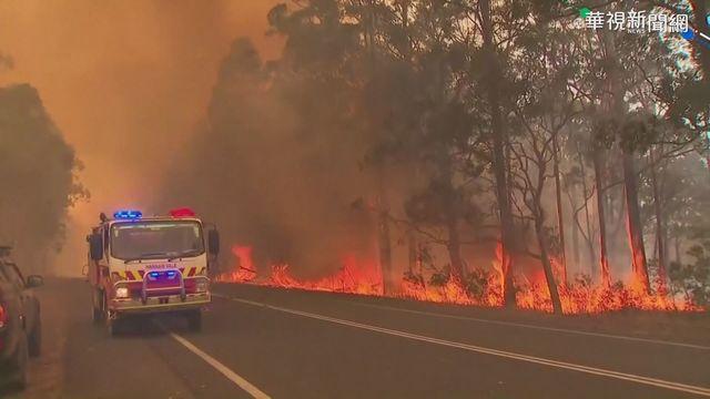 澳洲野火已延燒逾4個月。(資料照片)