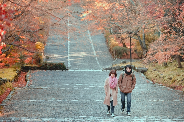 《若是一個人》京都楓紅取景 孫可芳冷到忘詞宋柏緯獨享泡湯 |