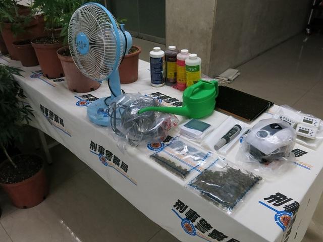 警方在現場查獲大麻活株81株、乾燥大麻成品40公克、電子磅秤、烘乾設備、種植及製造大麻工具1批。(刑事局提供)