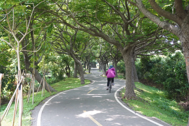 台中市潭雅神綠園道自行車道。