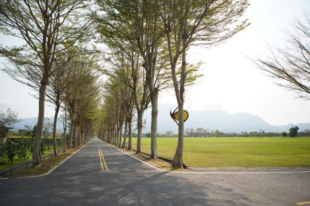 台東縣鹿野自行車道。