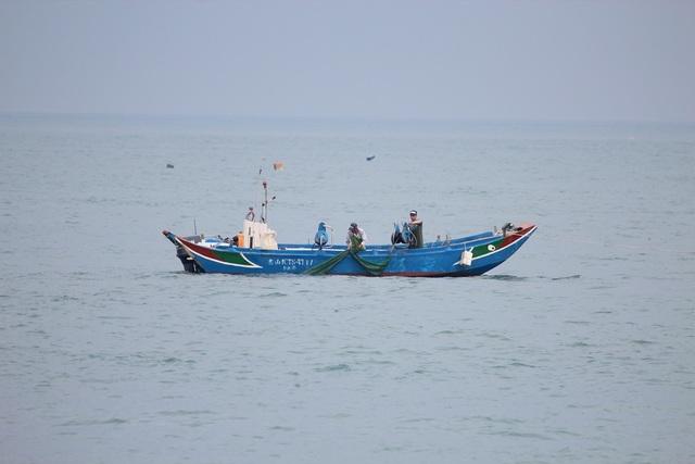 新北市政府農業局呼籲漁民朋友們遵守每年6月15日至9月14日禁止捕撈魩鱙之規定。(農業局提供)