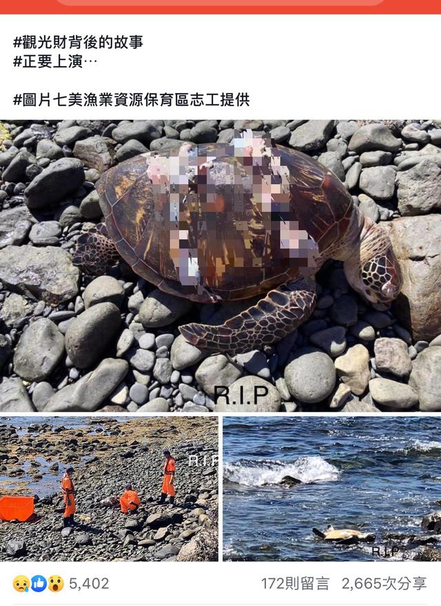圖/翻攝自臉書社團《沿著菊島旅行-澎湖資訊網》