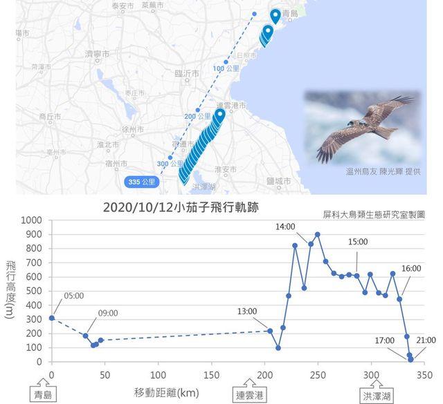 (翻攝屏科大鳥類生態研究室 NPUST Bird Ecology Lab 臉書)