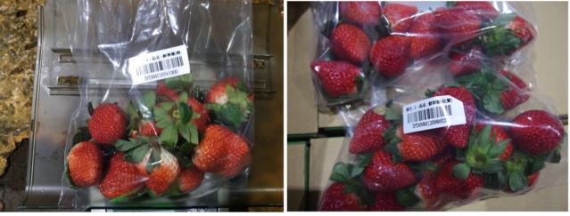 2項日本草莓被驗出農藥、重金屬鎘超標。(翻攝自食藥署官網)