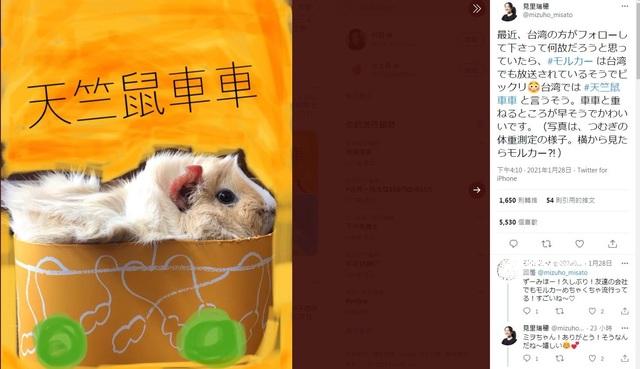 導演姊姊貼出天竺鼠「馬鈴薯」的照片。(翻攝自見里瑞穗推特)