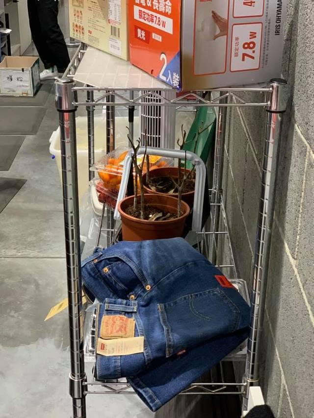 一名網友目睹有顧客將枯萎的盆栽拿去好市多退貨。(翻攝自臉書社團「爆廢1公社」)