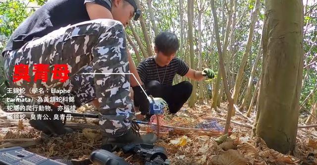網紅J爸與友人發現臭青母 (翻攝自YT/ J爸)