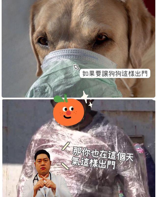 出門幫狗狗戴罩無法散熱 獸醫:動物不會傳染新冠病毒給人 | (翻攝杜克動物醫院臉書)